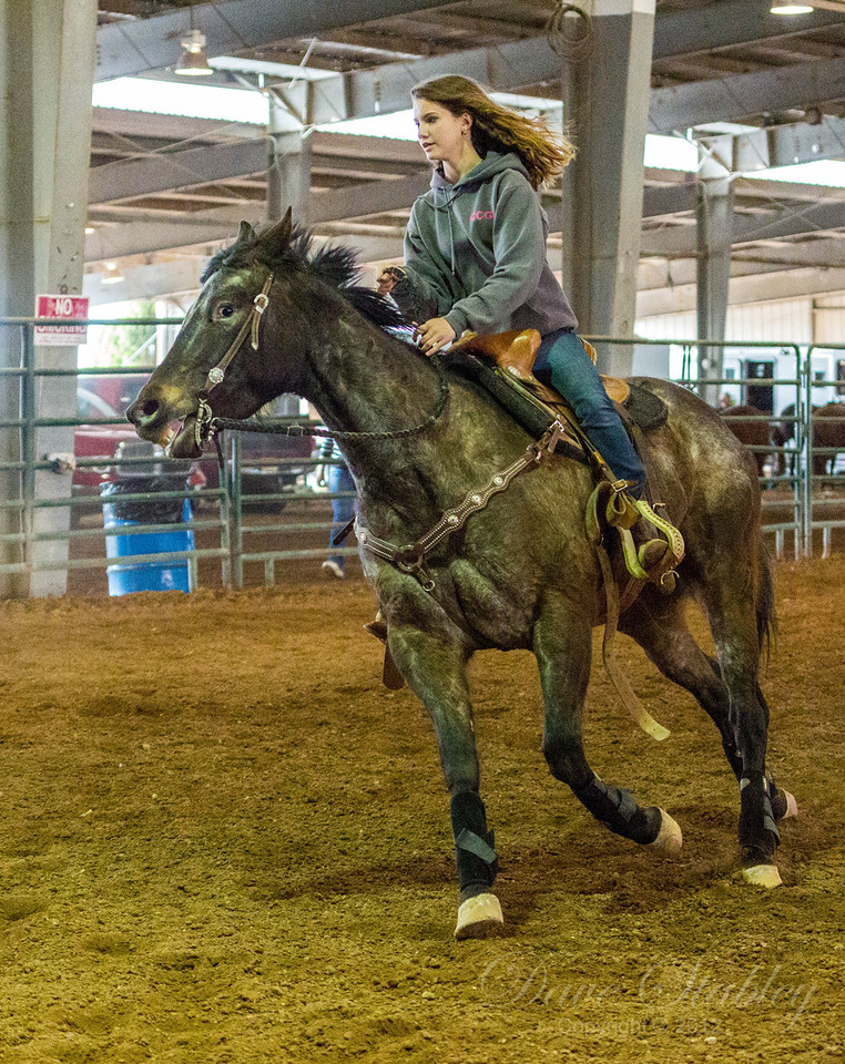 Barrel Racing-7124