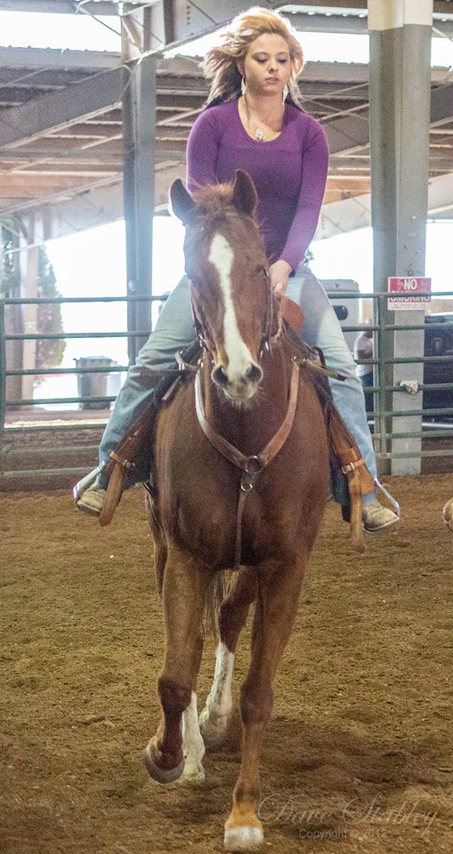 Barrel Racing-7098