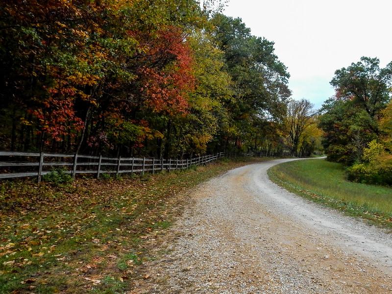 Three Creek Farms Hunt