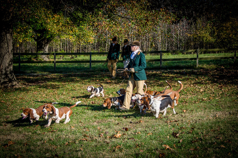 Blessing of the Hounds 2016