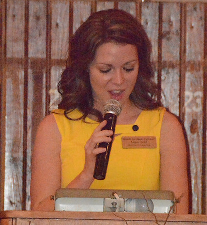 Will Fehlinger | The Herald-Tribune<br /> BACC executive director Anna Ibold welcomed everyone to the annual awards dinner.