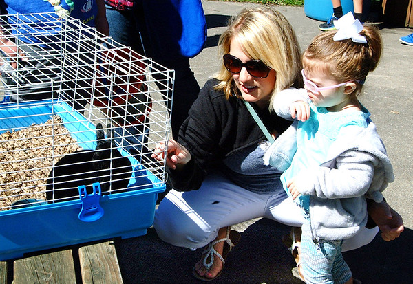 Diane Raver | The Herald-Tribune<br /> Sydney Stoneking, 2, and her mom, Sarah, take a look at a rabbit.