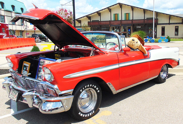 Diane Raver | The Herald-Tribune <br /> Many classic vehicles were on site for the cruise-in. A furry friend was behind the wheel of this 1956 Chevy convertible owned by James Holliday, Moores Hill.