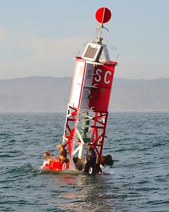 Sailing_JB_BDay_03172010-023