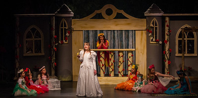 Beauty and the Beast My niece. Caitlyn O'Rourke, in the lead role in Beauty and the Beast with the Harlequin Players.