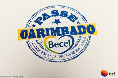 Becel Brazil Cruise (Corporate Group)