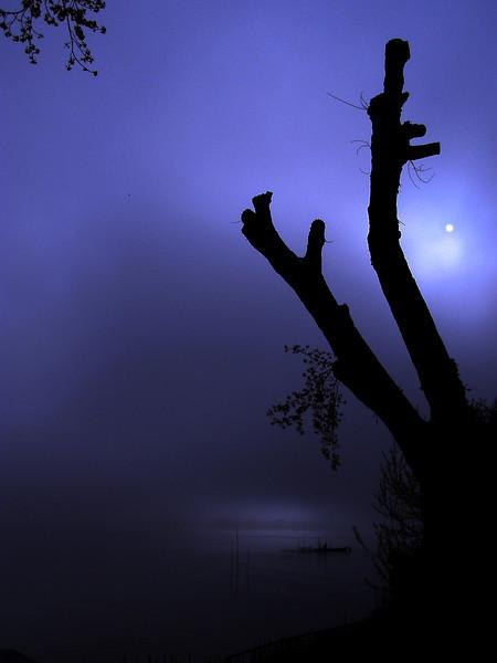 Spooky light on the island Reichenau