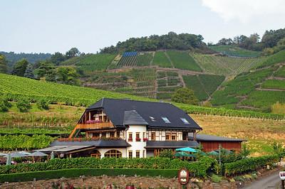 Rotweinwanderweg in the Ahrtal