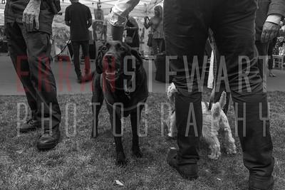Erran Stewart Photography-20