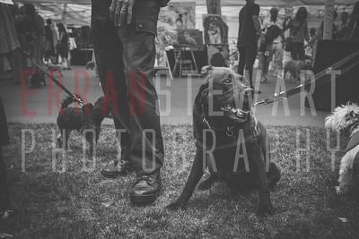 Erran Stewart Photography-19