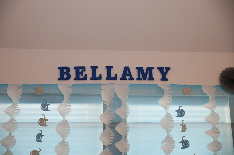 Bellamy's Baby Shower
