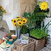 01  Gardener's World_05A8966