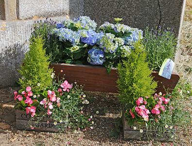 01  Gardener's World_05A8973