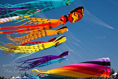 Berkeley Kite Festival 2009