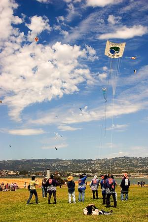 bringing down a hamamatsu kite