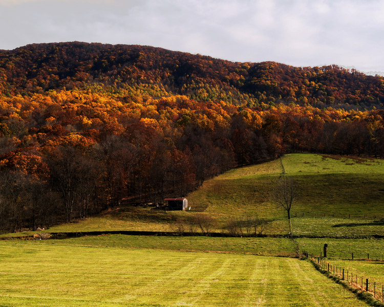 Catawba Valley<br /> near Roanoke, Virginia<br /> October 31, 2006