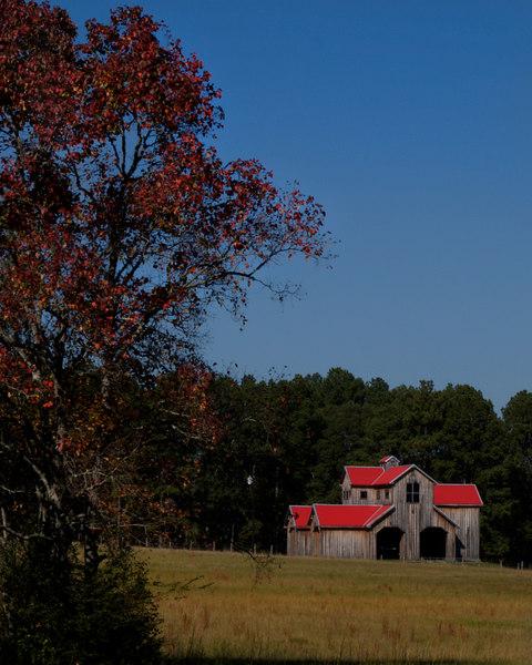 Red-roofed Barn<br /> El Camino Highway, Route 7<br /> outside Crockett, Texas<br /> 18 November 2006