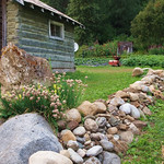 another shot of Everette's garden