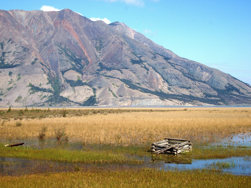 Sheep Mountain and Kluane Lake wetlands