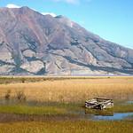 Sheep Mountain and Kluane Lake wetlands