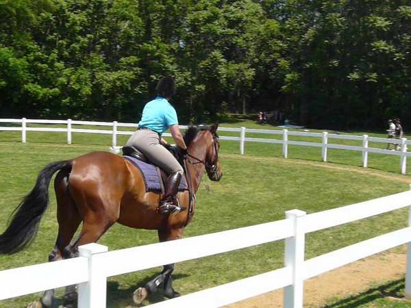 Bill Moroney Hunter-Jumper Clinic May 2009