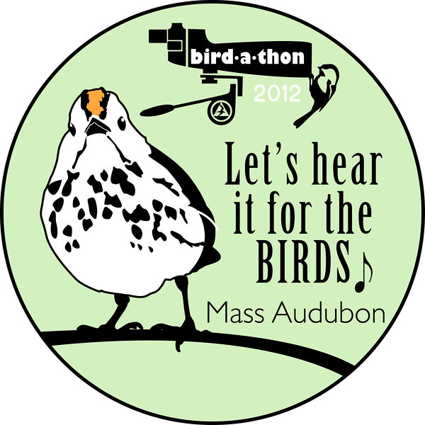 Let's hear it for the birds! Bird-a-thon 2102 was a wonderul success thanks to everyone who birded, fundraised, or donated (some did all three!).