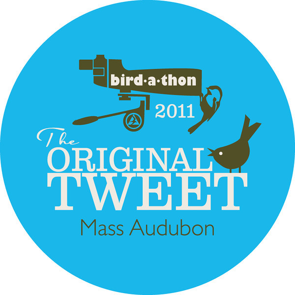 "<font size=""4""><strong>Long before there was Twitter, there was Bird-a-thon and our 2011 event was definitely something to ""tweet"" about!</strong></font>"