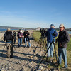 """<font size=""""4""""><strong>Coastal birders were awestruck by the numbers of certain species at Eastern Point in Gloucester, Nahant, Marblehead Neck, and Plum Island. </strong></font>"""