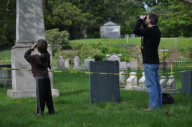 "<font size=""4""><strong>Bird watchers at Mount Auburn Cemetery were treated to a special sight....</strong></font>"