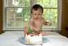 2010-05-30 Hatcher Smash cake 42