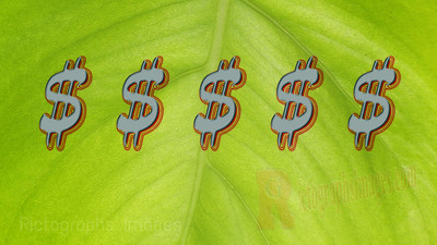 Green Leaf, Money