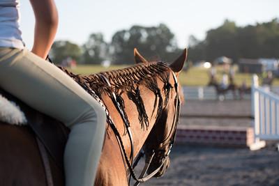 4-H Club Region 1 Horse & Pony Show