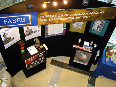 Black History Month at FASEB.