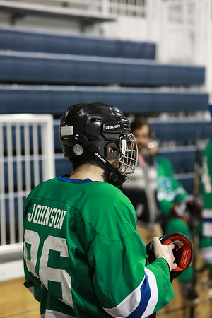 Blades Hockey Game 03-16-2018 Ann Arbor