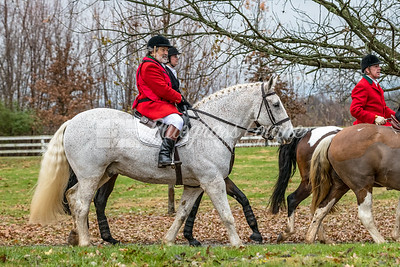 Lee Bishop  rides his Percheron Horse, Howard in The Blessing of the Hounds Ceremony. The Long Run Woodford Hounds at Shakertown Village, Harrodsburg, Kentucky 11.24.18 Photos by Laura Palazzolo