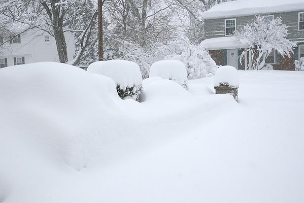 Blizzard 2010
