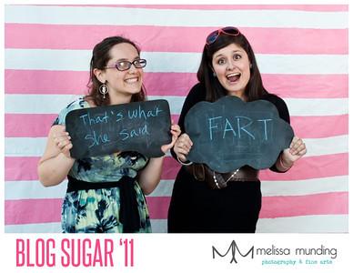 blog sugar_0024