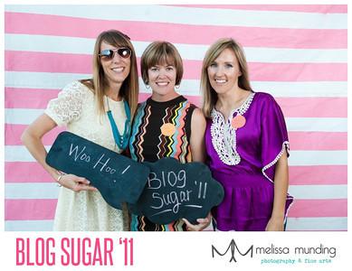 blog sugar_0014