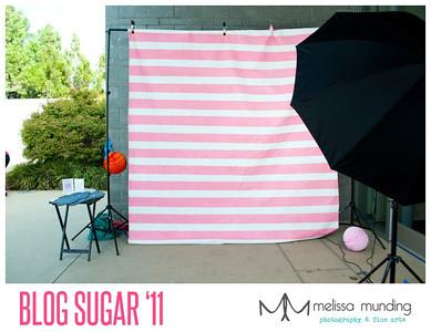 blog sugar_0021