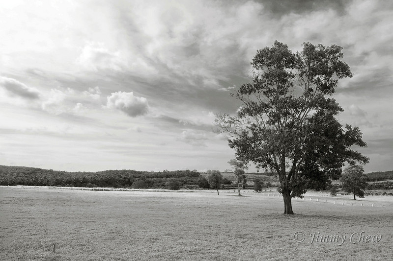 A B&W rendition of similar location. This photo is from my previous visit.