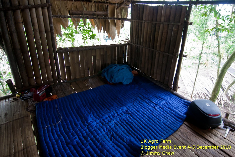 The view inside the Orang Asli hut 20 feet above ground. Only accommodates three. Talk about simple living... this is it.