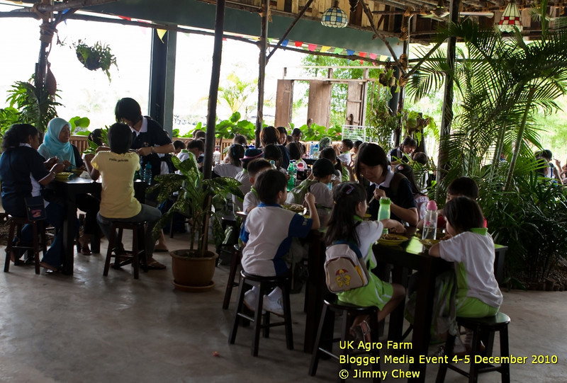 There are many packages that offer group tour. Such is the case with this group of schoolchildren on educational tour. UK Agro Farm also ventures into tourism line and aims to be the top leisure farm in Malaysia.