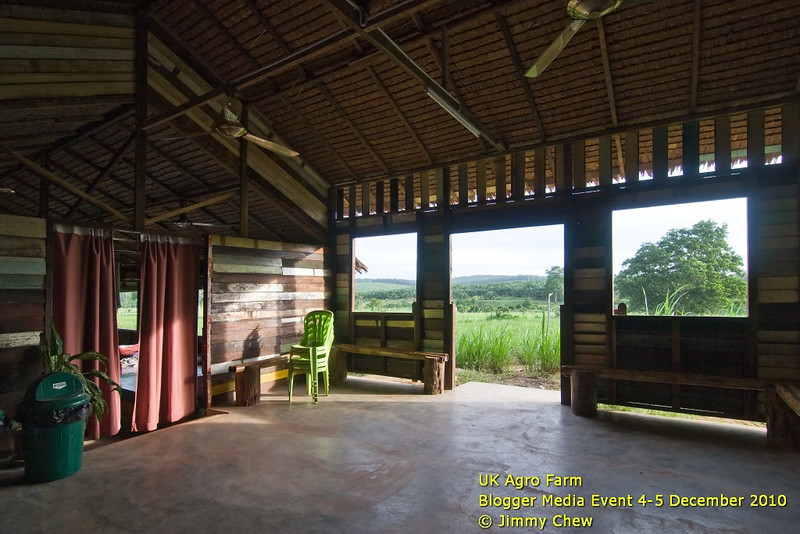 The common hall shared by the dormitories. Tidy and clean. Instant access to the farmland. Sunrise location. Can do games here. Our dorm is on the left, beyond the curtain.