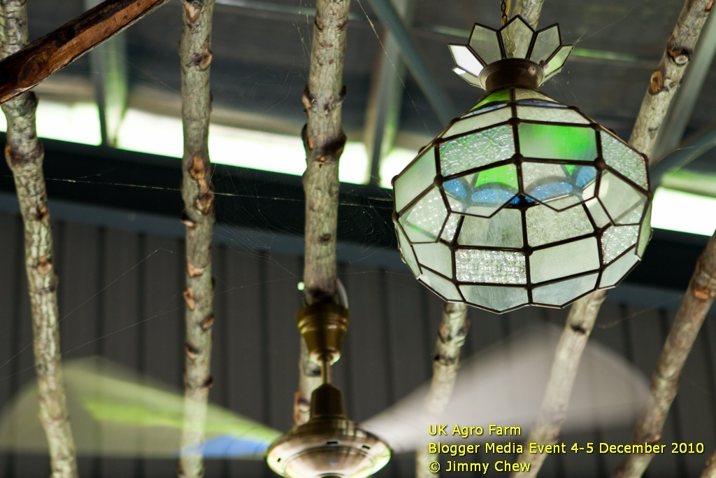 A decorative light at the dining hall.