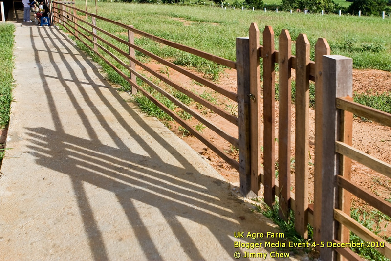 A photo of gate and shadows en route to archery centre.
