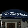 Blue Pheasant Halloween 10 2009 004