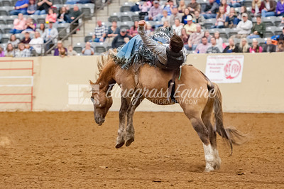rodeo-2893