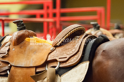 rodeo-2789