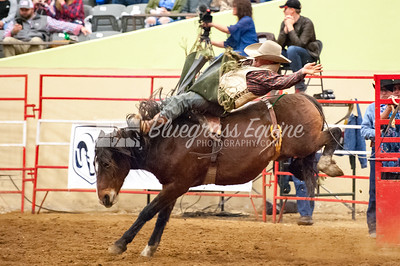 rodeo-2905