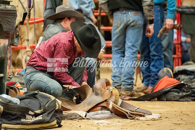 rodeo-2794